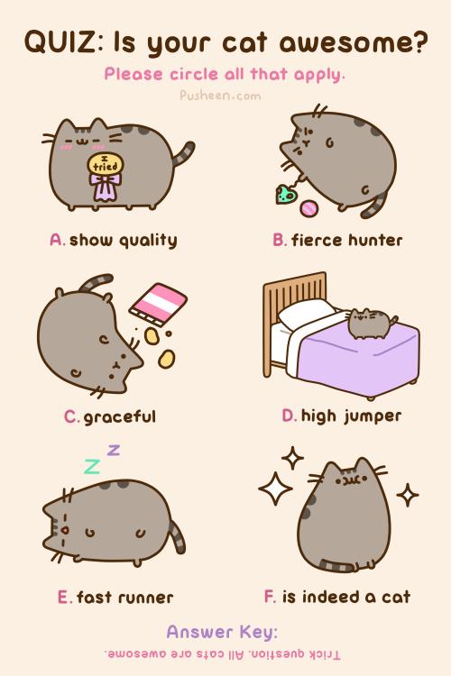 Pusheen The Cat Kelly Illustrates
